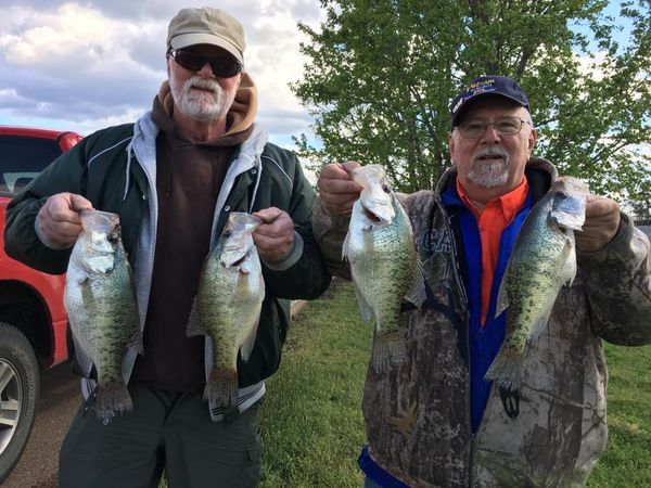 Chicago fishing reports chicago fishing forums view for Enid lake fishing report