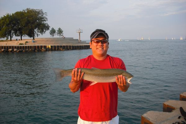Chicago fishing reports chicago fishing forums view for Chicago fishing report