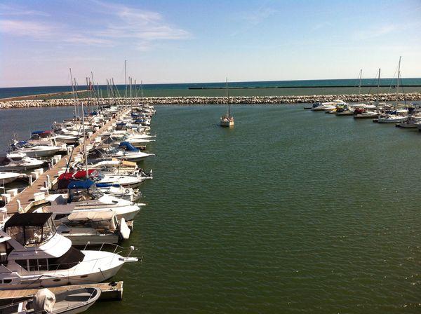 Chicago fishing reports chicago fishing forums view for Port washington fishing