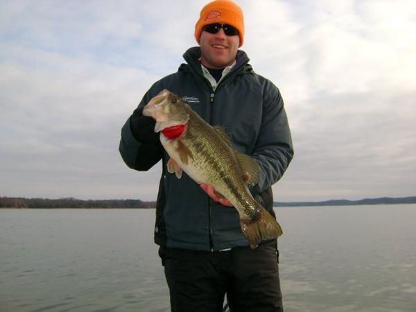 Chicago fishing reports chicago fishing forums view for Ky lake fishing report jonathan creek